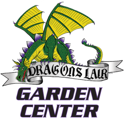 dragon's lair garden center