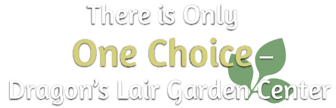 there is only one choice-dragons lair garden center